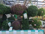artificial topiary all shapes and sizes