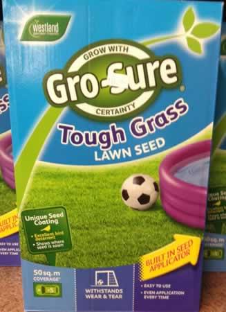 grass seeds tough grass