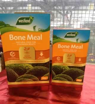 Bonemeal