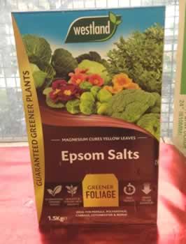 epson-salts