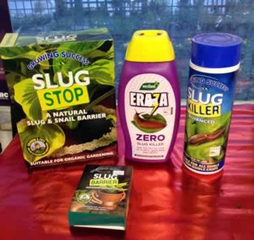 Growing Suceess Slug Stop