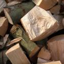 hardwood-logs