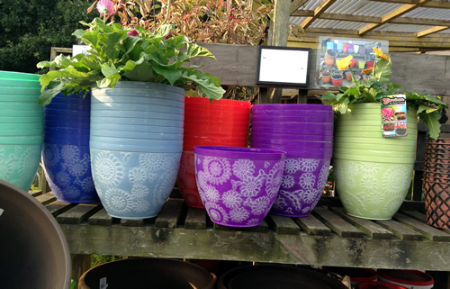 purple garden pots anlex garden centre, all different colors