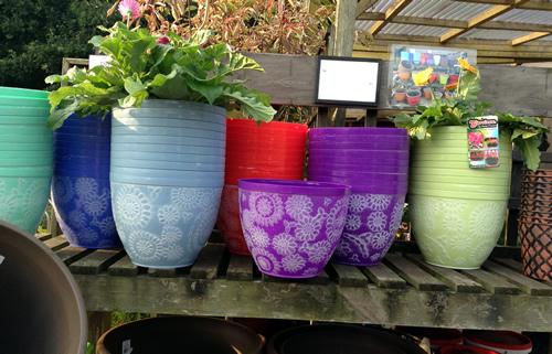 purple garden pots anlex garden centre, all different colors