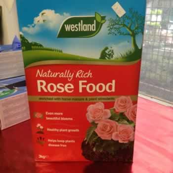 rose-food