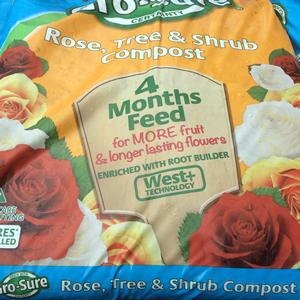 rose-tree-shrub-compost